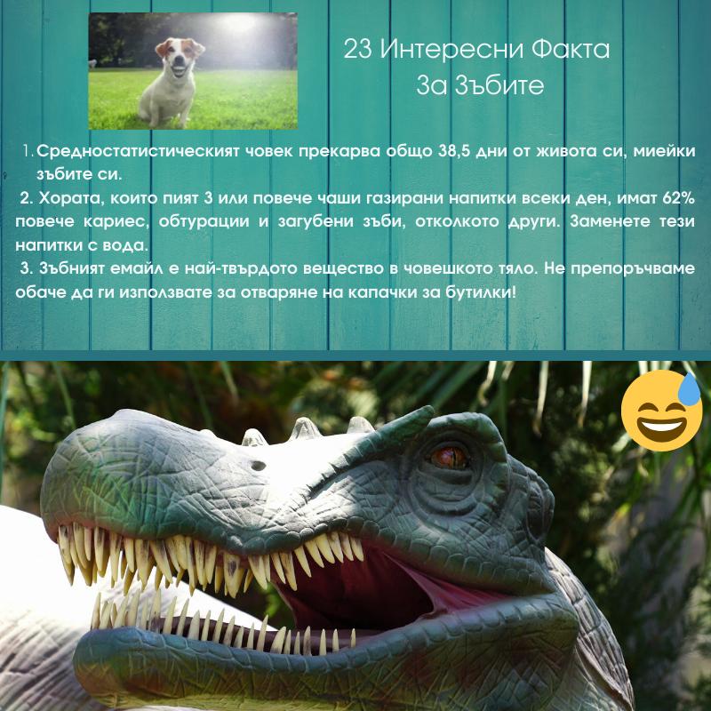 23 Интересни факта за зъбите